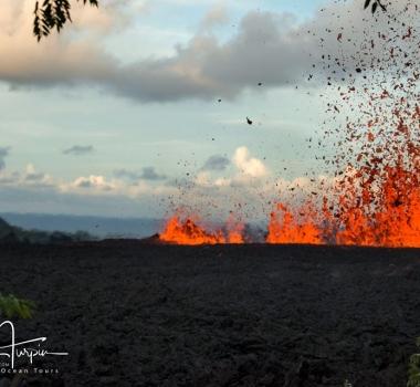 May 17 , 2018. EN.  Pu'u 'Ō'ō / Kilauea , Fuego , Stromboli , Piton de la Fournaise .