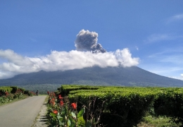 January 19 , 2019.  EN.  Indonesia : Agung , Indonesia : Kerinci , El Salvador : San Miguel ( Chaparrastique ) , Spain : Tenerife .