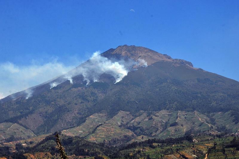 15 Novembre 2019. FR. Indonésie : Lamongan , Hawaii : Mauna Loa , Italie : Stromboli , Equateur : Sangay .