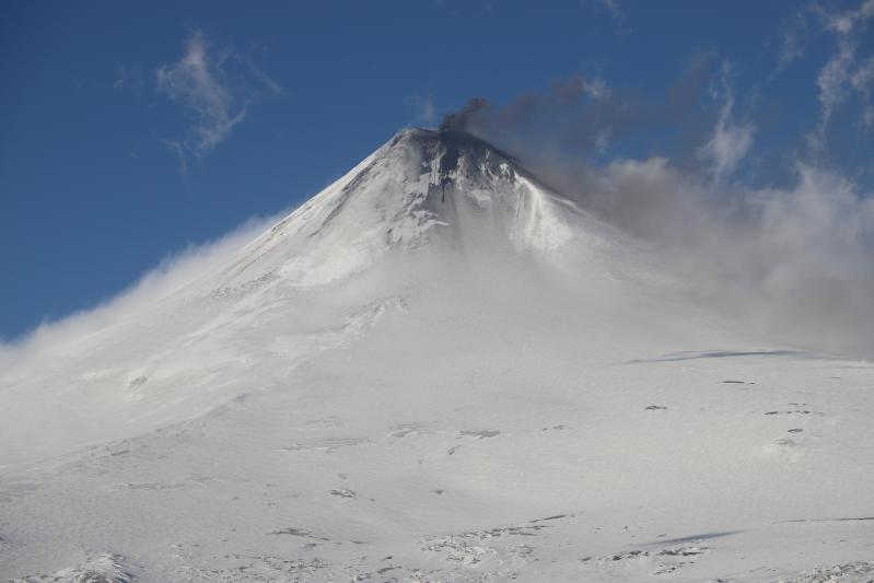 January 04 , 2020 . EN . Alaska : Shishaldin , La Reunion : Piton de la Fournaise , Italy : Campi Flegrei , Chile : Nevados of Chillan .